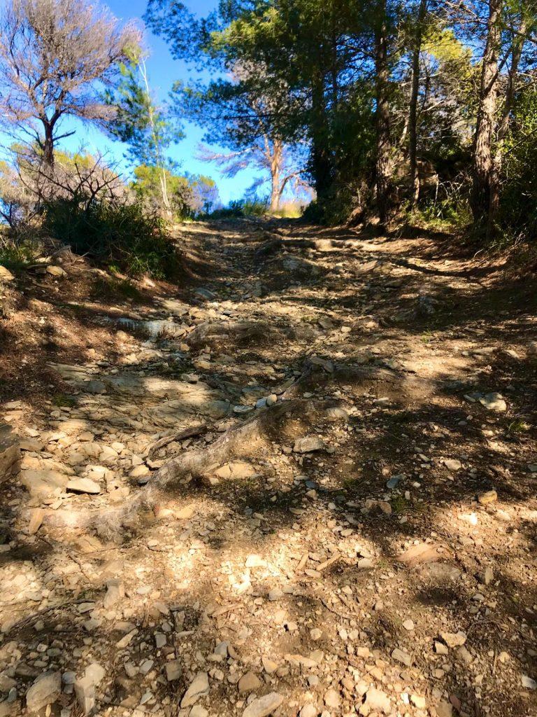 "Trail Running Cipressa Costarainera Comuni da scoprire .""Trailk20″"